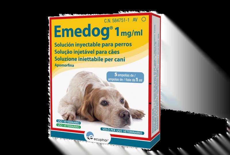 Ecuphar lança apomorfina injetável registada para o mercado veterinário