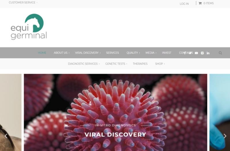 Portuguesa cria teste de diagnóstico do 'novo vírus equino'