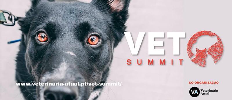 Vet Summit