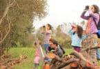 EuroBirdwatch: em outubro a Europa vai estar de olhos postos nos céus