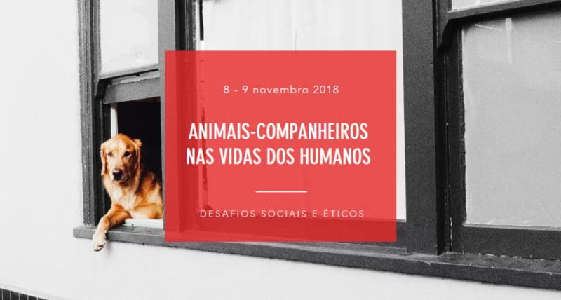 'Animais-companheiros nas vidas dos humanos': desafios sociais e éticos em discussão