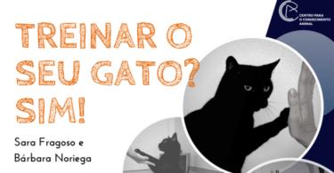 CPCA quer partilhar tudo o que precisa saber sobre felinos