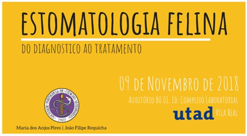 SPCV promove seminário sobre 'Estomatologia felina'