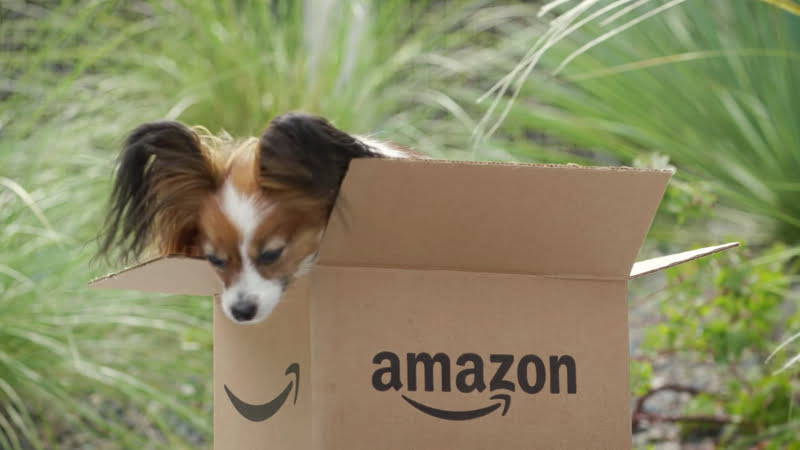 Amazon quer alargar 'presença' no mercado pet