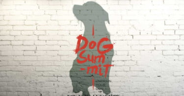 Vem aí o Dog Summit
