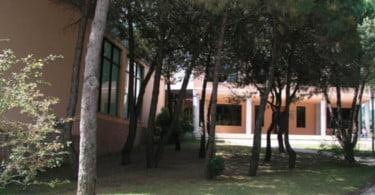 Centro de Recuperação de Animais Silvestres de Lisboa abre portas esta sexta-feira