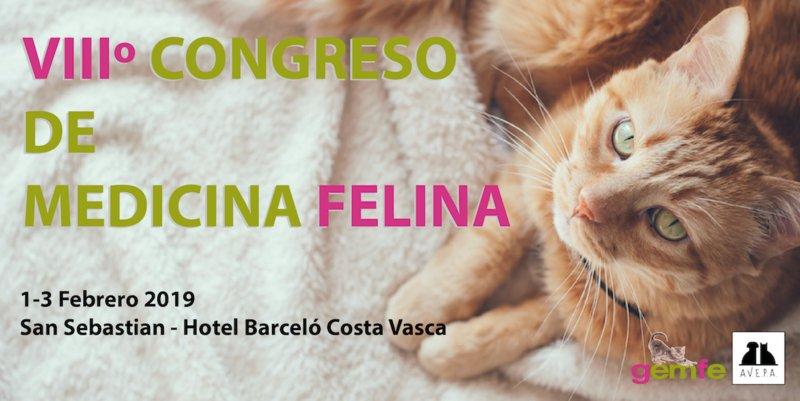 VIII Congresso de Medicina Felina da AVEPA realiza-se em fevereiro