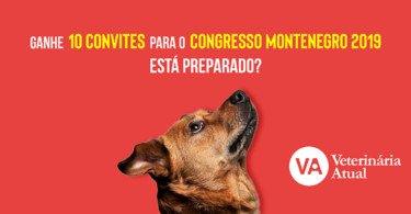 Passatempo convites congresso Montenegro