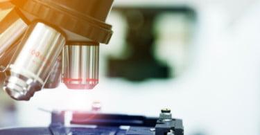 Portugal entre os países que mais produz investigação científica