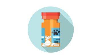 EMA autoriza dois novos medicamentos de uso veterinário