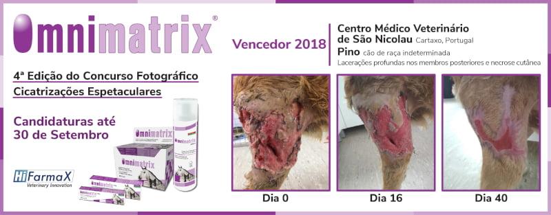 Concurso Hifarmax premeia cicatrizações com Omnimatrix