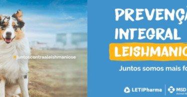 MSD Animal Health e Leti apoiam criação do Dia Nacional da Leishmaniose Canina