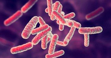 Investigadores conseguem criar antibiótico capaz de atacar apenas as bactérias más