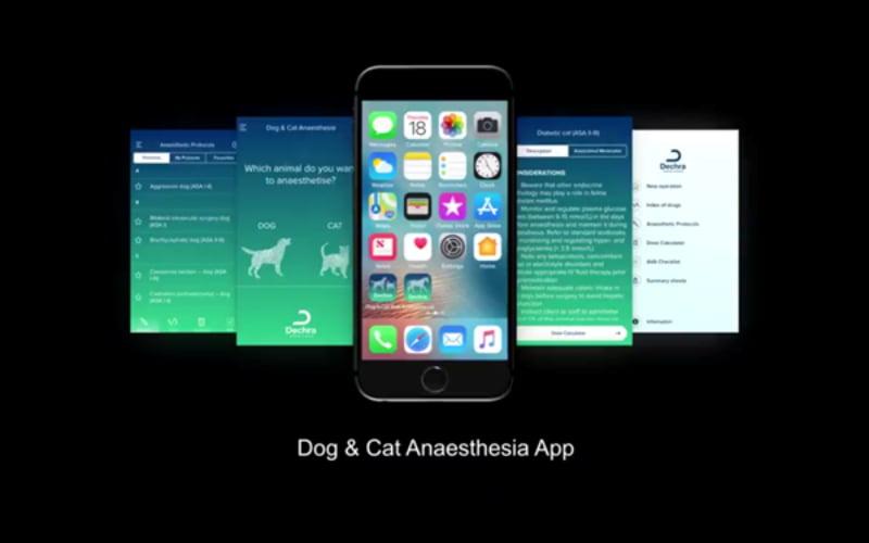 Dechra cria app para ajudar veterinários a 'desenhar' protocolos de anestesia à medida do paciente