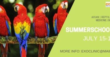ExoClinic abre nova edição do curso de verão