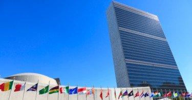 """Nações Unidas pedem foco """"coordenado e multissetorial"""" para travar resistências antimicrobianas"""