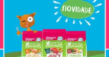 Always Pet Care lança nova linha alimentar para gatos