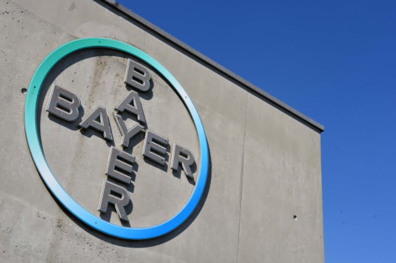 Bayer poderá estar a planear fusão com Elanco Animal Health