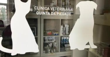 Clinica Veterinária Quinta da Piedade