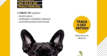 Centro comercial Alegro Alfragide oferece rastreios e workshops a tutores de cães
