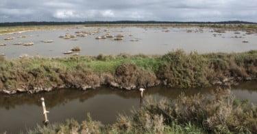 Comissão Europeia pede a Portugal investimento nas áreas protegidas