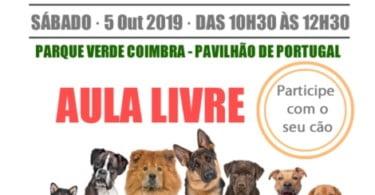 Positive Way – Treino Canino oferece aula no Dia do Animal
