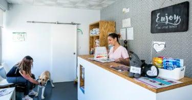 Clínica Veterinária Patas da Linha: uma clínica que é uma família