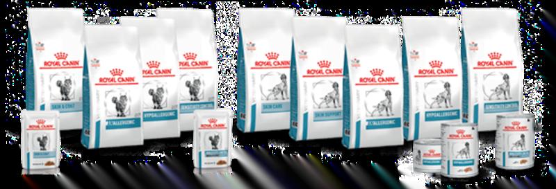 Royal Canin lança gama de dietas para animais com problemas de pele