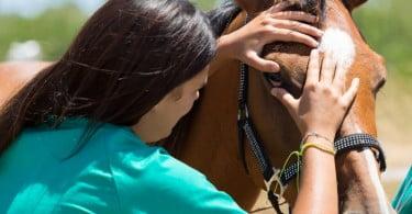 Setor da veterinária é dominado pelas mulheres