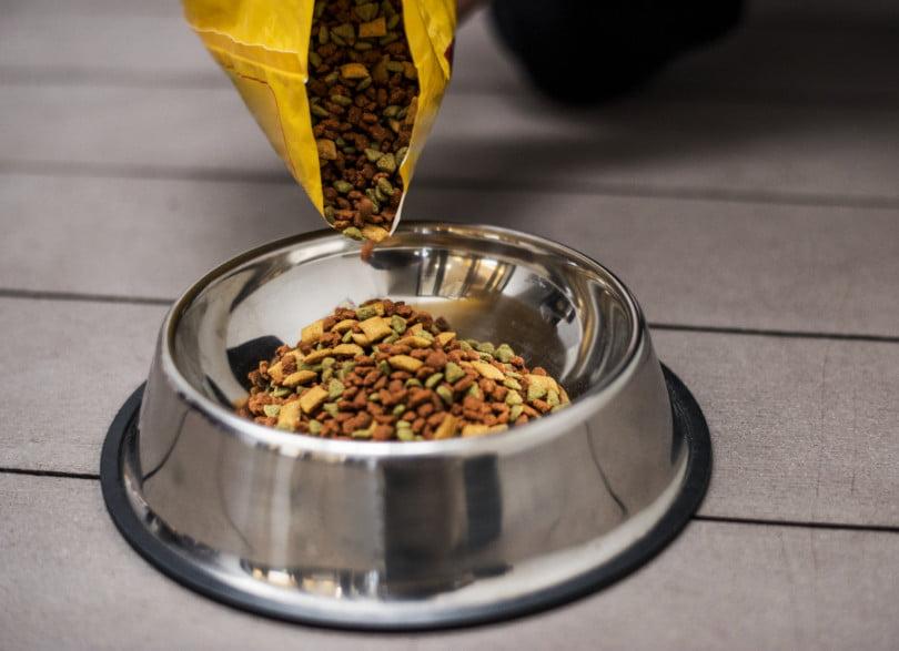 Campanha da Mars angaria 200 mil refeições para animais acolhidos por instituições