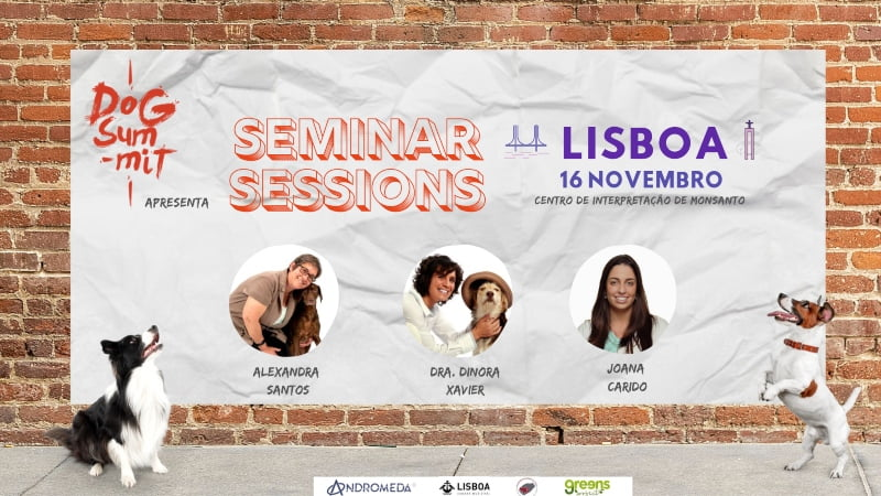 Dog Summit transforma-se em tour e vai percorrer o País