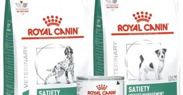Satiety Weight Management da Royal Canin tem nova imagem