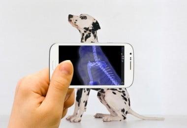 Podemos confiar em diagnósticos radiográficos via smartphone? Este estudo diz que sim