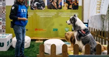 Expozoo recebe mais de 25 mil visitantes