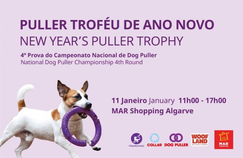MAR Shopping Algarve com competição dedicada ao desporto canino
