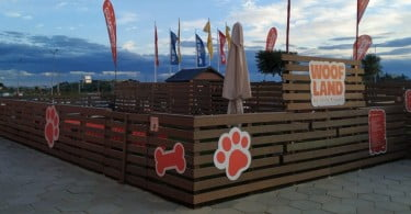 Woof Land - Veterinária Atual