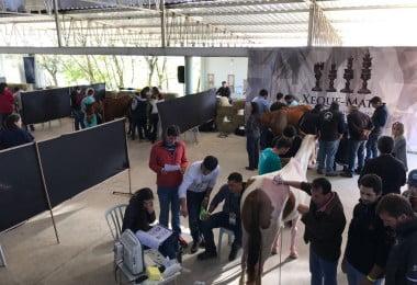 Sintra recebe treino avançado em afeções locomotoras e médico-desportivas dos equinos
