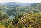 Iniciativa para conservação da vida selvagem do Douro