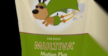 Novo suplemento para cães com ação condroprotetora