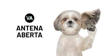 ANTENA ABERTA MATERIAIS page