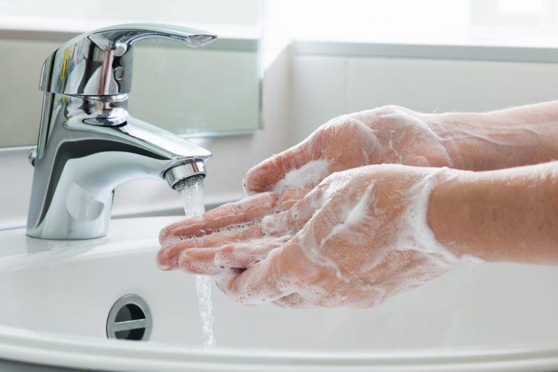Lavar maos recomendacoes OMV Vet Atual