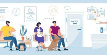 GenePet: plataforma online para interligar intervenientes da medicina veterinária