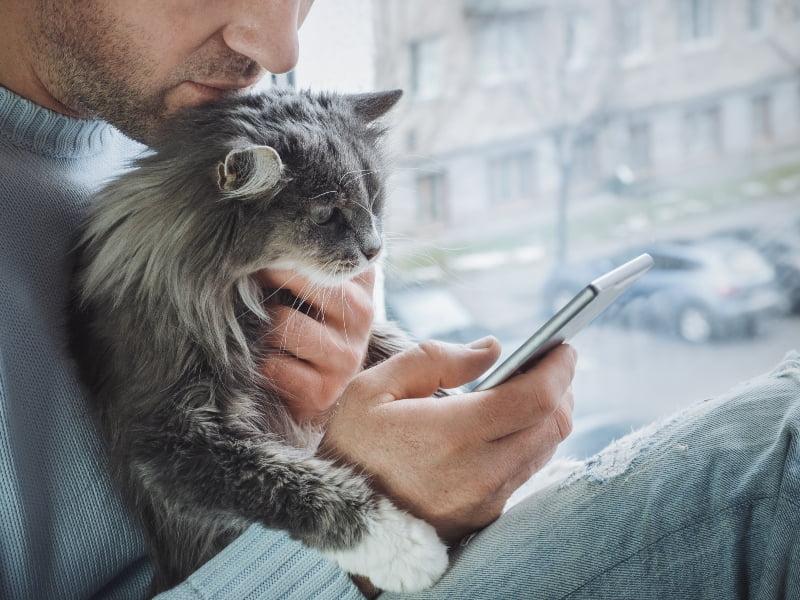 Vet Atual Telemedicina veterinária