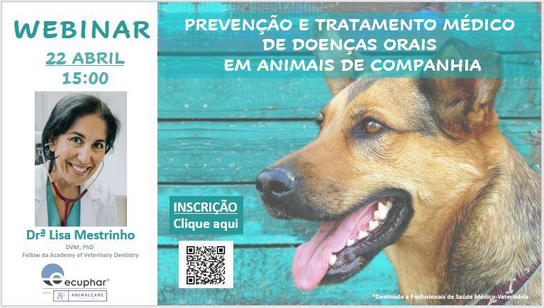 Webinar dedicado à saúde oral em animais de companhia