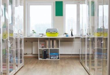 Inquérito avalia impacto da crise do coronavírus em clínicas veterinárias