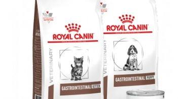 GAMA DE DIETAS PARA PROBLEMAS GASTROINTESTINAIS_ Novas dietas específicas os gatinhos e cachorrinhos _page-0001