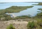 Biodiversidade na Europa: estudo analisa alterações nos ecossistemas