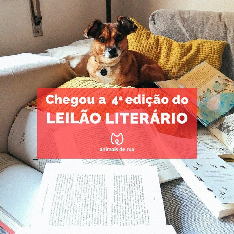 Leilao IGb