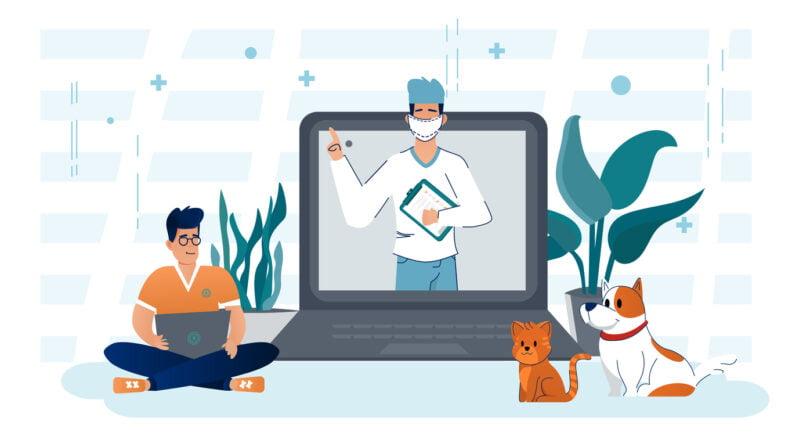 Clínica veterinária marketing online
