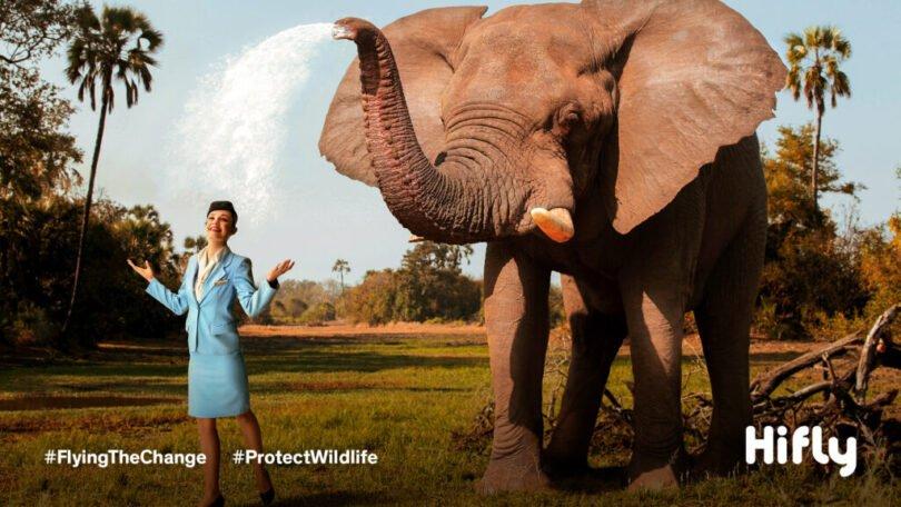 protectwildlife  screensaver p